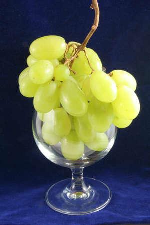 blue velvet: Wine glass and grapes on a blue velvet
