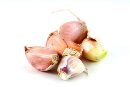 gruppo di garlics isolato su sfondo bianco con un po 'di ombra