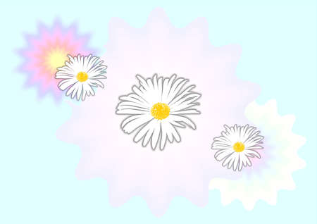 daisys: beautiful daisys spring texture with blue sky  background