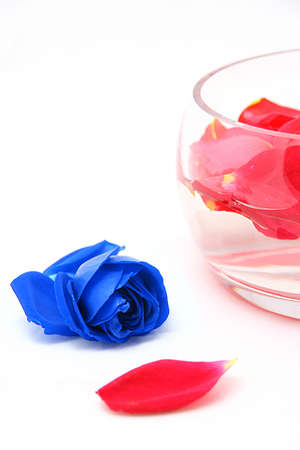 whiteness: Roses petals on a white  in a glass vase Stock Photo