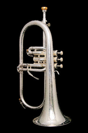 flugelhorn: wet fluegelhorn with golden mouthpiece isolated on black with water drops on it Stock Photo
