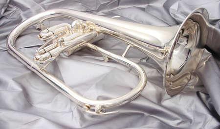 flugelhorn: Silver fluegelhorn with mouthpiece on a silver fabric