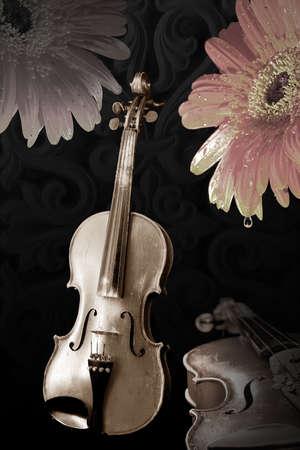 violins: Old wooden violins on black and flowers in sepia