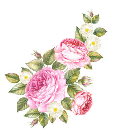 Bouquet of rose. Invitation card for wedding, birthday and other holiday and summer background. Botanical illustration.