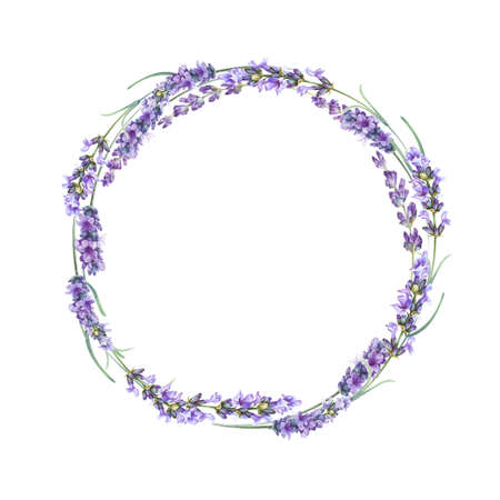 The lavender wreath isolated over white background. Watercolor painting botanical illustration.