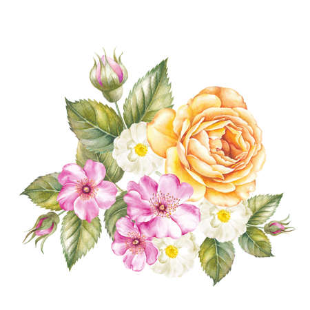 watercolour: Blooming rose flower watercolor illustration. Cute pink roses in vintage style for design. Handmade garland composition. Yellow and pink flowers with green leaves are isolated over white background.