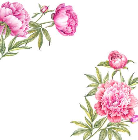 Boeket aquarel roze pioenen. Tak van roze pioenen geïsoleerd voor uw lente ontwerp. Stockfoto