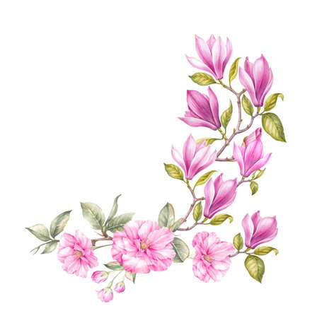 Blossom Magnolia and Japanese Cherry flowers. Watercolor art of blooming flowers bouquet. Watercolour botanical illustration.