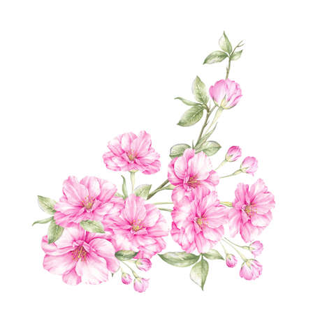 Spring flower design. Watercolor pink sakura for textile pattern on invitation background. Botanical illustration. Stock fotó