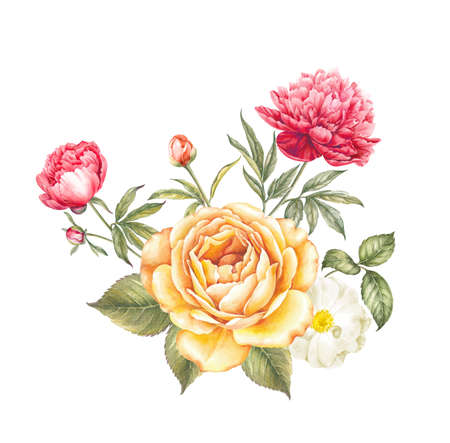 Bouquet of rose and peony flowers. Invitation card for wedding, birthday and other holiday and summer background. Vintage watercolor botanical illustration.