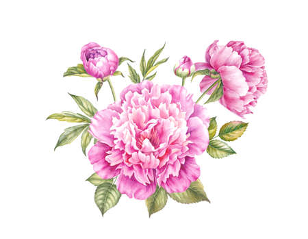 Vintage garland of blooming peonies. Watercolor botanical illustration of a flowers. Template for invitation card. Red and pink flowers with green leaves are isolated over white background.