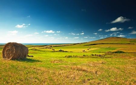 Bonito paisaje españoles en verano