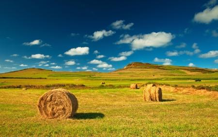 Nice spanish landscape at summer