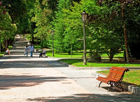 Nice park in the city  Stock Photo