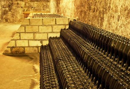 Vine cellar  Stock Photo - 16462098