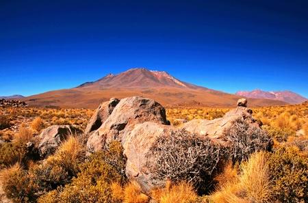Nice Bolivian scene photo