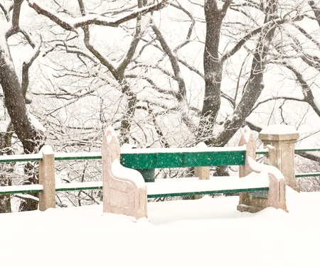 Nice park in winter with snowfall  Stock Photo