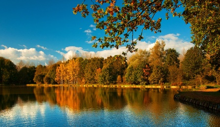 Nice autumnal scene with lake photo