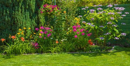정원의 꽃 스톡 콘텐츠 - 82423557