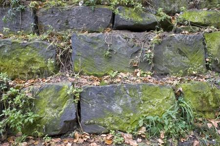Stone wall, green grass, yellow sheet