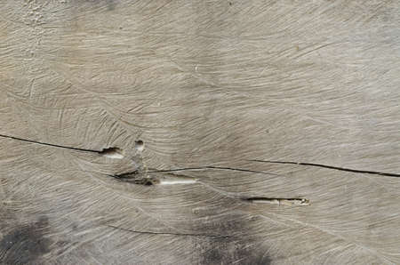 Texture of old brown Cut wood for  background  photo