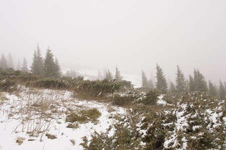 Ukraine, fog in mountains, Goverla, winter photo