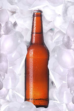 Bottle of cold beer is in ice photo