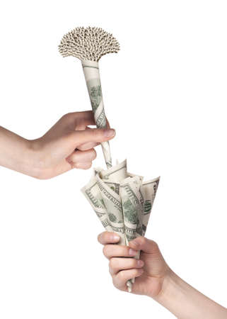 money flower business concept present isolated on a white background Stock Photo - 15968905