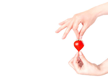 Stylish red valentine day heart background with hand and sherry tomatoes isolated Stock Photo - 17120142