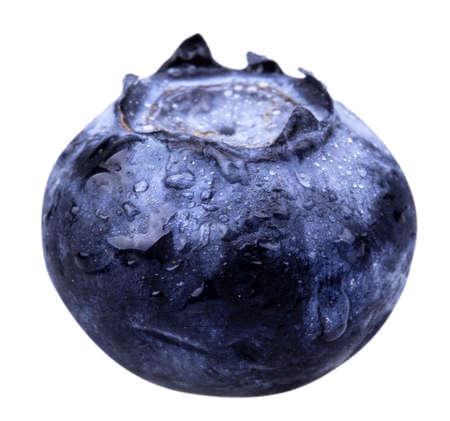 Vers geplukte blueberrie met water druppels geïsoleerd