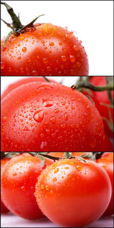 Cherry tomatoes with water drops set photo