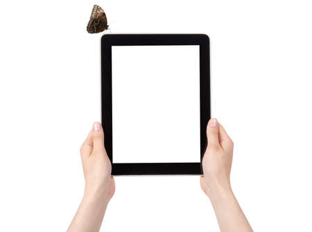 Hands of a woman holding digital tablet with butterfly  displaying a white screen. photo