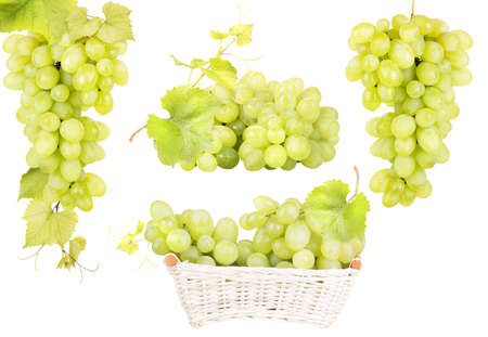 white grape isolated photo