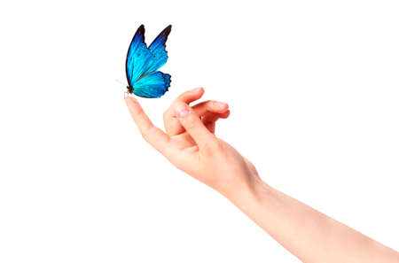 butterfly on woman's hand. In motion concept isolated