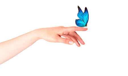 butterfly on woman's hand. In motion concept isolated photo