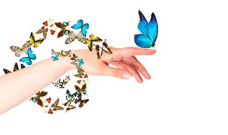 donna farfalla: farfalla sulla mano della donna. In movimento concetto isolato Archivio Fotografico