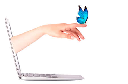 hand butterfly: Laptop side view with  butterfly on womans hand. In motion isolated