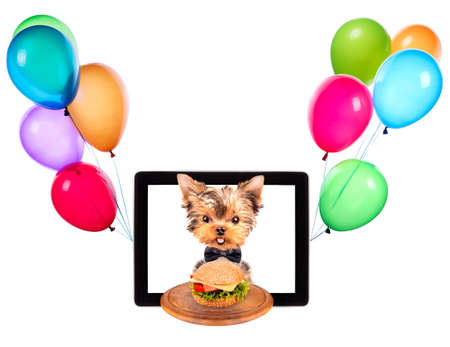dog holding service tray with food and balloons on a digital tablet screen photo