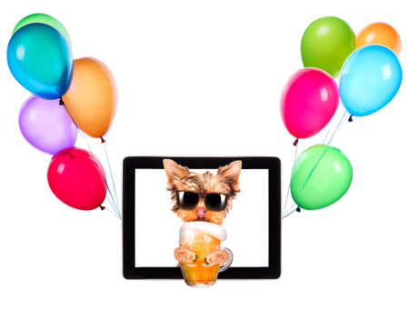 dog on tablet computer with glass of beer and balloons photo