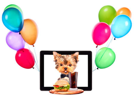 dog holding service tray with food and balloons on a tablet screen photo