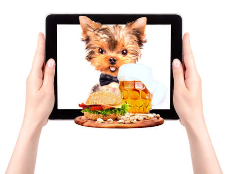 dog holding service tray with food and drink on a digital tablet screen photo