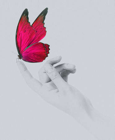 butterfly hand: butterfly on womans hand. In motion concept isolated