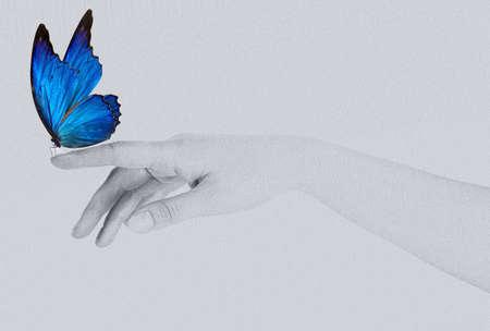 blue butterfly: mariposa en la mano de la mujer. En el concepto de movimiento aislado Foto de archivo