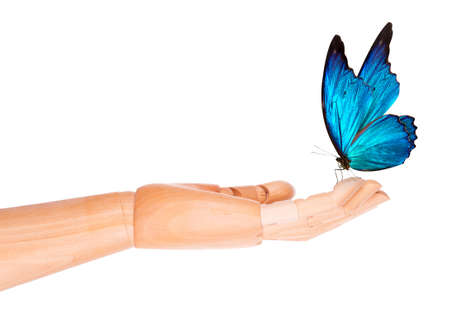 butterfly on wooden hand. In motion concept isolated photo
