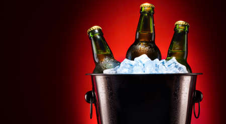 Beer bottles in ice bucket photo