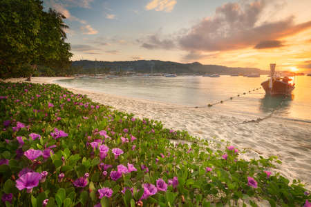 morning nature: Beautiful beach with colorful flowers and boat Stock Photo