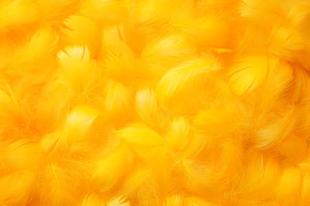 feather boa: Soft and gentle theme with feathers