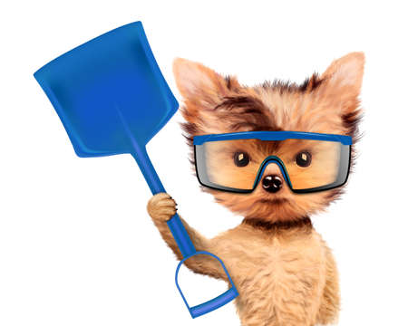 page not found: Funny dog with shovel Isolated on white