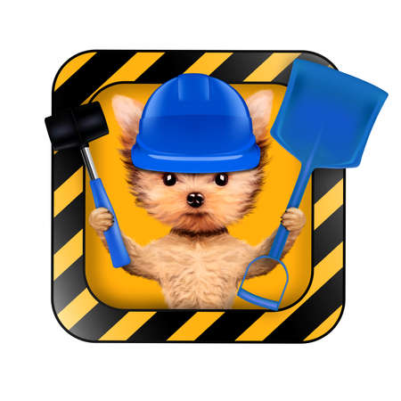 Funny dog with construction tools isolated on white Banco de Imagens