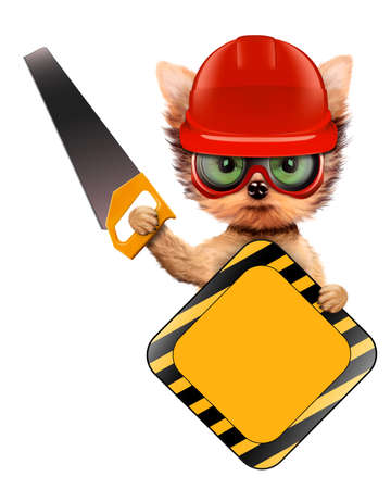 warning saw: Funny dog with construction tools isolated on white Stock Photo